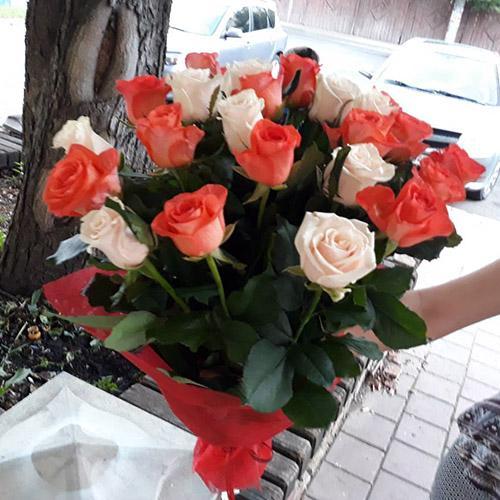 Розы в Черкассах фото